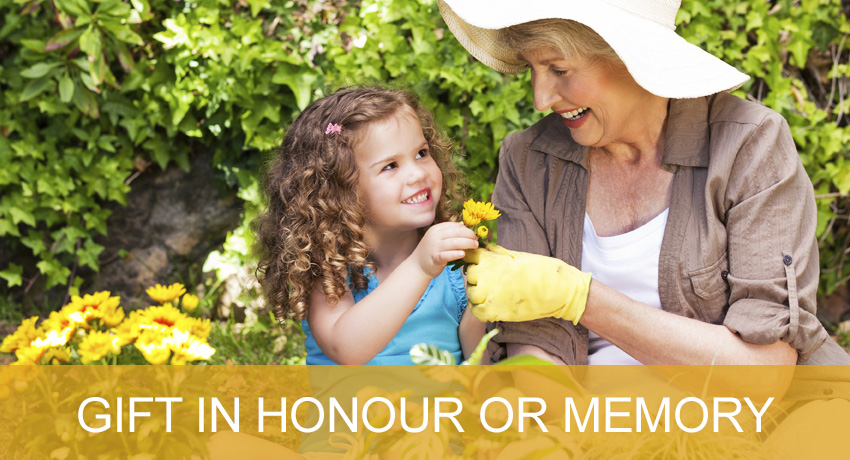 Gift in Honour or Memory