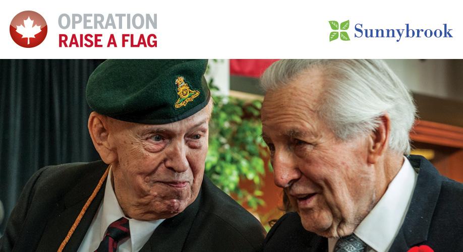 Operation Raise a Flag